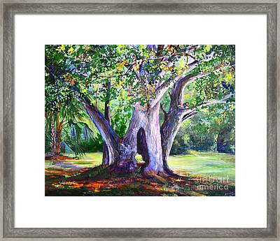 Hickory Hole Framed Print