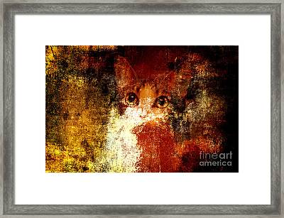 Hidden Framed Print by Andee Design