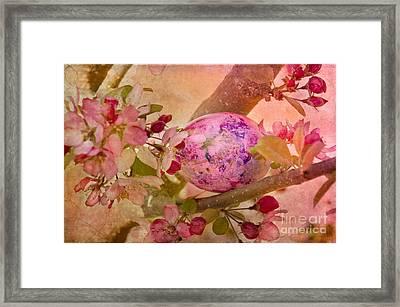 Hidden Framed Print by Betty LaRue