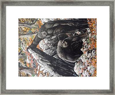 Hidden Entrance Framed Print