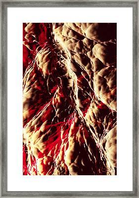 Hidden Faces Framed Print by Matt Lindley