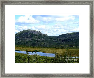 Hidden Fishing Bonanza Framed Print