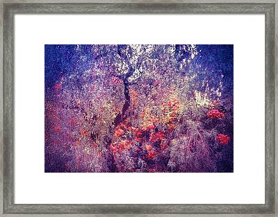 Hidden Garden Of Desire Framed Print by Jenny Rainbow
