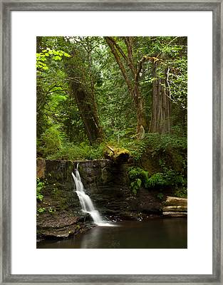 Hidden Gem Framed Print by Randy Hall