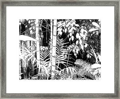 Framed Print featuring the photograph Hidden Glade by Angela Treat Lyon