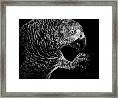 Hidden In The Canopy Framed Print by Nathan Cole