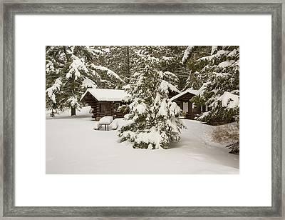 Hidden In The Forest Framed Print
