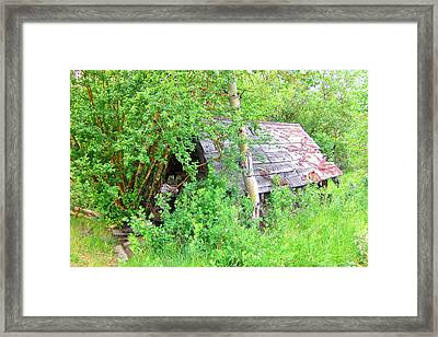 Framed Print featuring the photograph Hidden by Marilyn Diaz