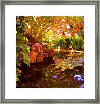 Hidden Pond Framed Print by Amy Vangsgard