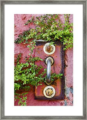 Hidden Red Door To Nowhere Framed Print by Carolyn Marshall
