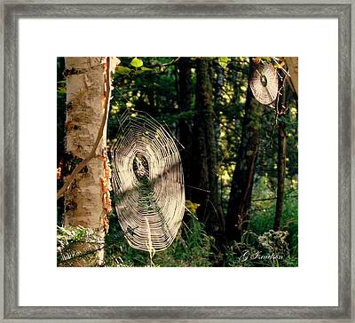 Hidden Secrets Framed Print
