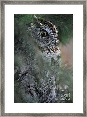Hidden Framed Print by Sharon Elliott