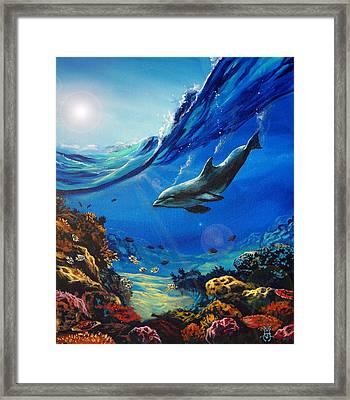 Hidden Splendor Framed Print by Marco Antonio Aguilar