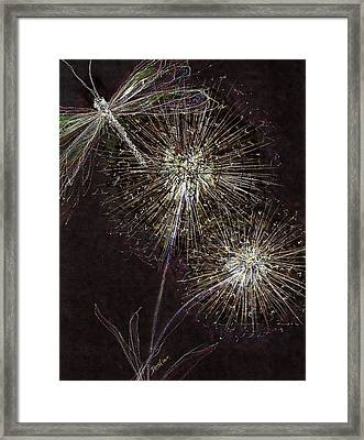 Hidden Treasures Framed Print