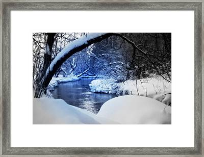 Hidden View Framed Print