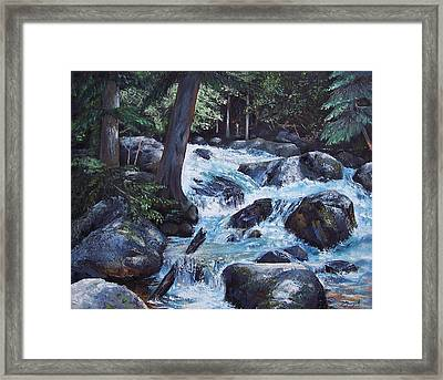 Hidden Waterfall Framed Print by Donna Munsch