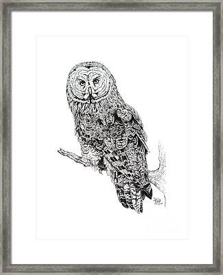 Hidden Wisdom Framed Print