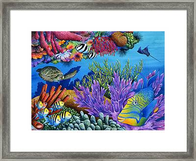 Hide And Seek Framed Print by Carolyn Steele