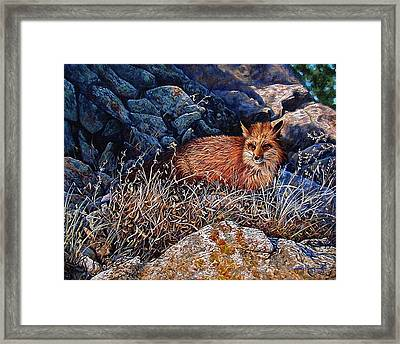 Framed Print featuring the painting Hide And Seek by Craig T Burgwardt