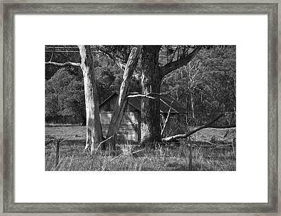 Hideaway Framed Print by Marty  Cobcroft