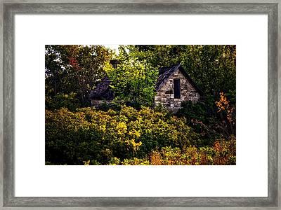 Hideaway Framed Print by Tricia Marchlik
