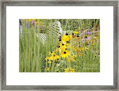 Hiding Alone Framed Print