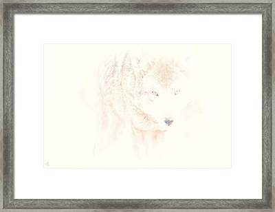 Hiding Behind Those Eyes Framed Print by Karol Livote