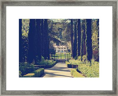 Hiding In The Garden Framed Print by Laurie Search