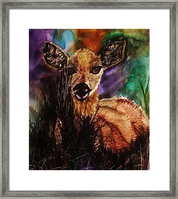 Hiding In The Shadows Framed Print by Lil Taylor