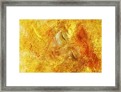 Hiding In Yellow Framed Print by Gun Legler