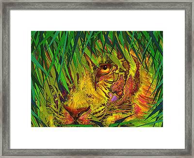 Hiding Framed Print by Jane Schnetlage