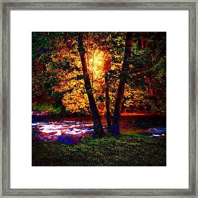 Hiding River Lantern Framed Print by Yevgeni Kacnelson