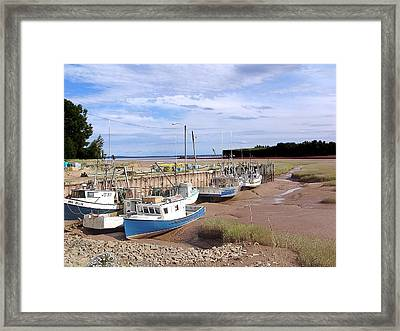 High And Dry  Framed Print by Janet Ashworth