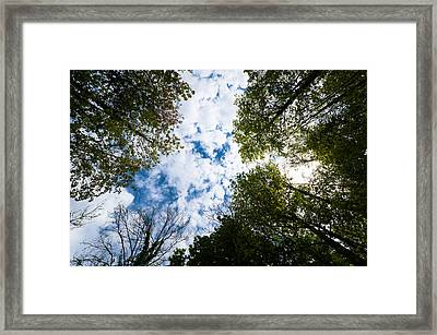 High And Dry Framed Print by Pedro Nunez