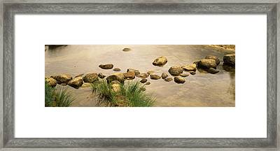 High Angle View Of Stepping Stones Framed Print