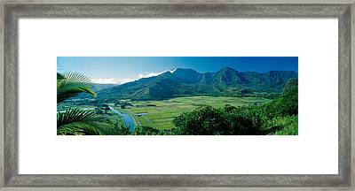 High Angle View Of Taro Fields, Hanalei Framed Print by Panoramic Images