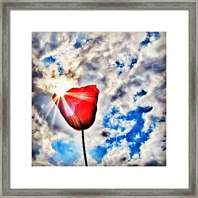 High As A Sky Framed Print