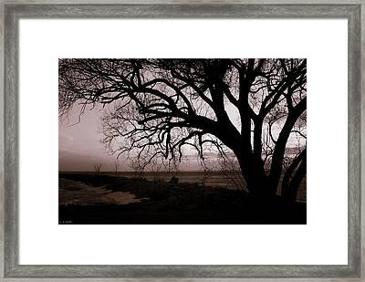 Framed Print featuring the photograph High Cliff Beauty by Lauren Radke