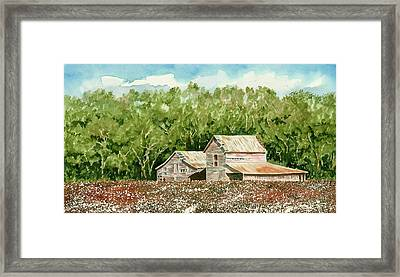 High Cotton Framed Print