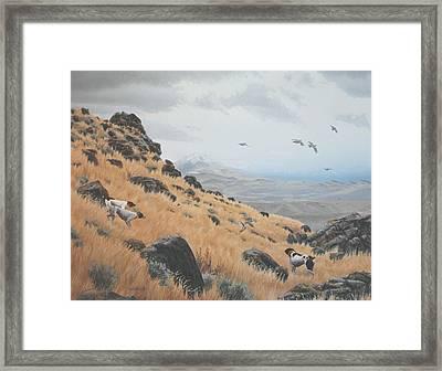 High Desert Dreams Framed Print