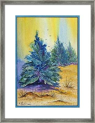 High Desert Spirit Framed Print