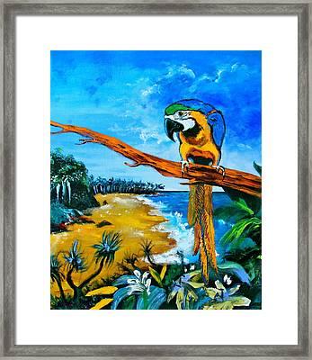High Esteem Framed Print by Karon Melillo DeVega