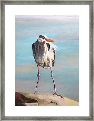High Falls Heron Framed Print by Debbie Anderson