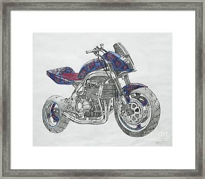 High Flier Framed Print by Stephen Brooks