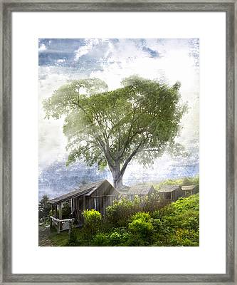 High In The Clouds Framed Print