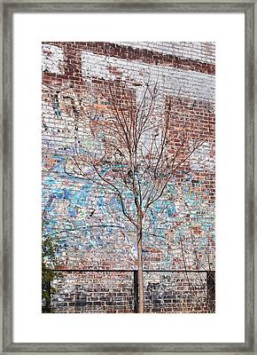 High Line Palimpsest Framed Print by Rona Black