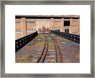 High Line Spur Framed Print by Rona Black