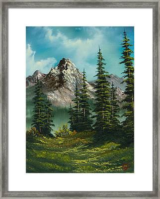 High Meadow Framed Print