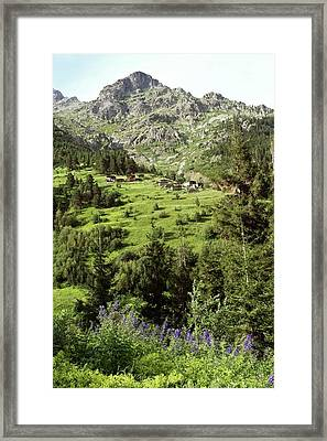 High Mountain Pastures Framed Print by Bob Gibbons