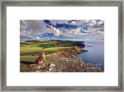 High On A Hill Top Framed Print
